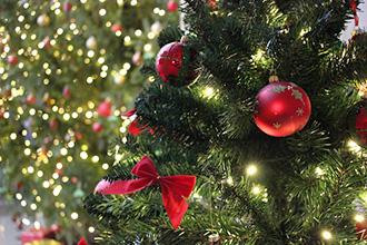 Могу ли я поставить ёлку у себя дома на Рождество?